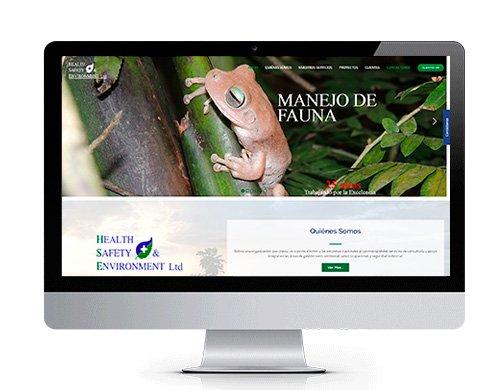 diseno-pagina-web-hse-colombia-portafolio Portafolio diseño de paginas web