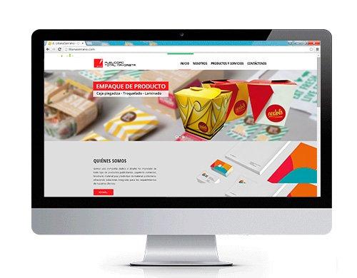 diseno-paginas-web-publicidad-total-mayorista Portafolio diseño de paginas web