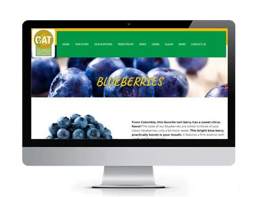 diseño-pagina-web-gat-portafolio Portafolio diseño de paginas web
